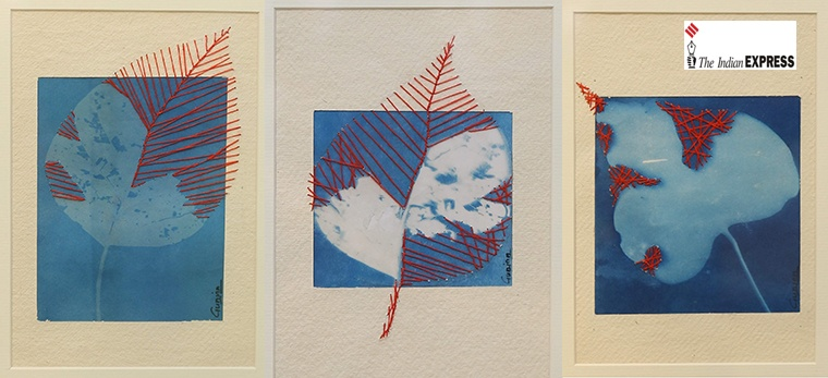 Gunjan Shrivastava's new collection of cyanotypes is call to action for environmental change